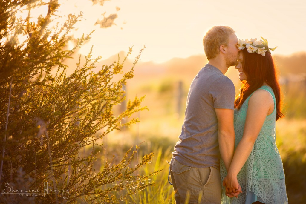 Elated father-to-be kisses pregnancy wife - Mornington Peninsula Photographer