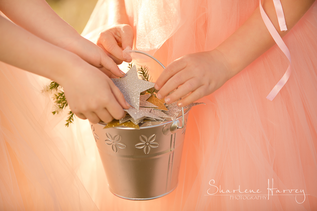 Children collecting stars and putting them in silver bucket