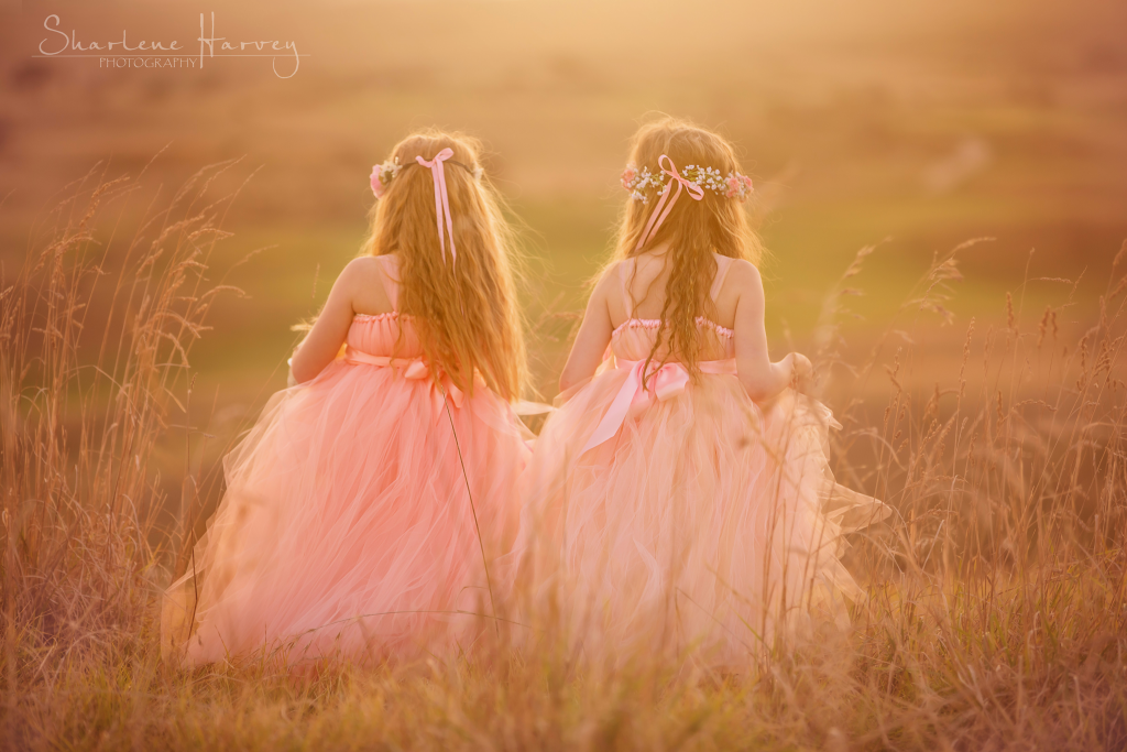Beautiful girls in tulle dresses